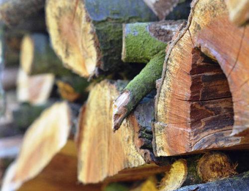 Trucs et conseils pour bien entreposer son bois de chauffage